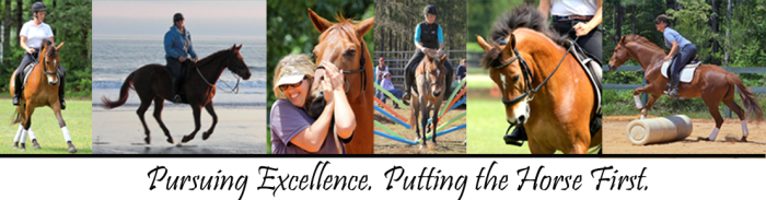 Pursuing Excellence. Putting the Horse First.