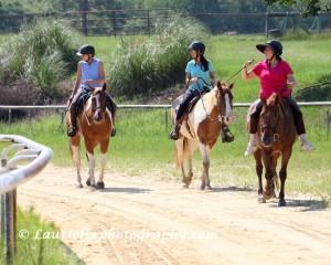3 disciplines ride